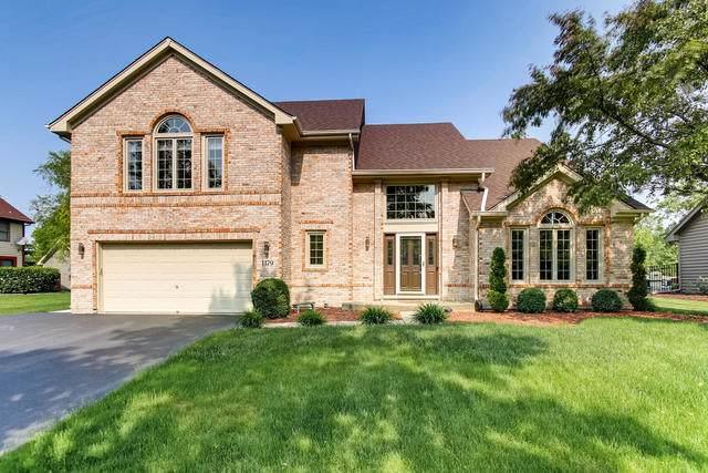 1179 Ancient Oaks Drive, Bartlett, IL 60103 (MLS #10456959) :: HomesForSale123.com