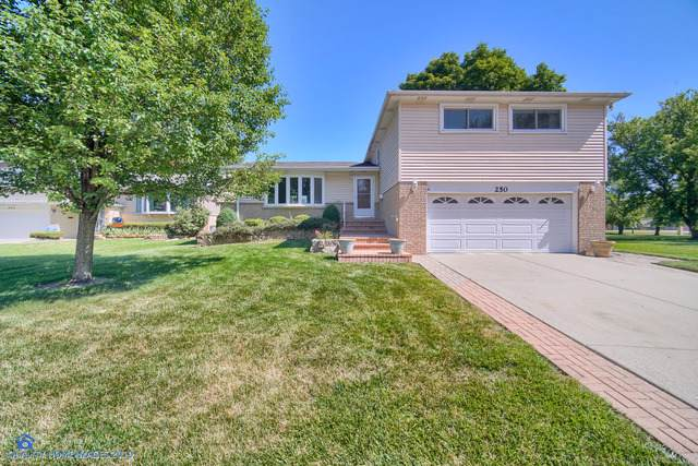 250 Norman Court, Des Plaines, IL 60016 (MLS #10457136) :: Berkshire Hathaway HomeServices Snyder Real Estate