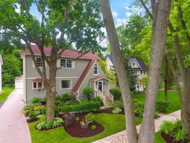 219 Raymond Avenue, Barrington, IL 60010 (MLS #10457199) :: Helen Oliveri Real Estate