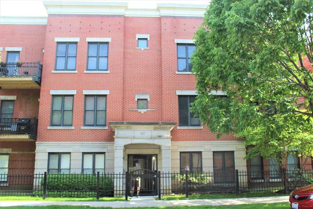 807 W 14th Place 3A, Chicago, IL 60608 (MLS #10457222) :: BNRealty