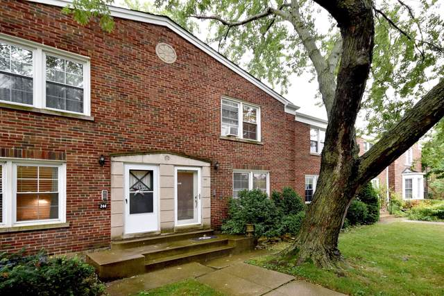 246 Elgin Avenue, Forest Park, IL 60130 (MLS #10457270) :: Ani Real Estate