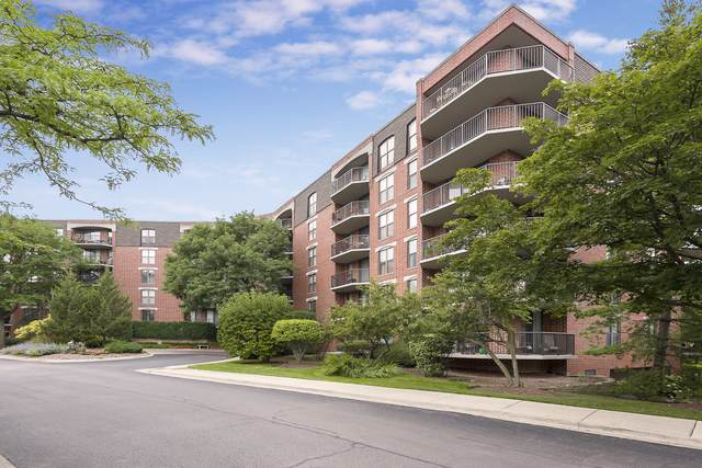 511 Aurora Avenue #218, Naperville, IL 60540 (MLS #10457540) :: Berkshire Hathaway HomeServices Snyder Real Estate