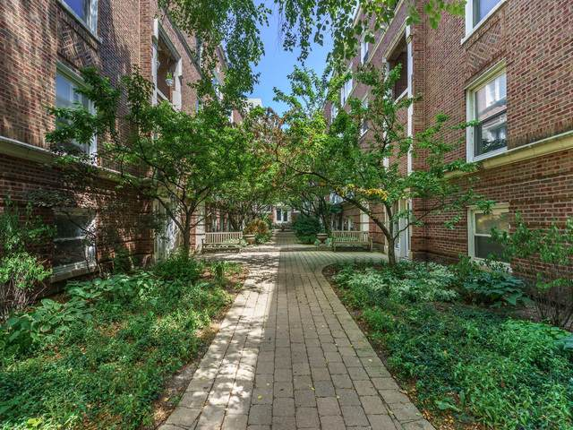 5109 N Kenmore Avenue 1W, Chicago, IL 60640 (MLS #10457591) :: John Lyons Real Estate