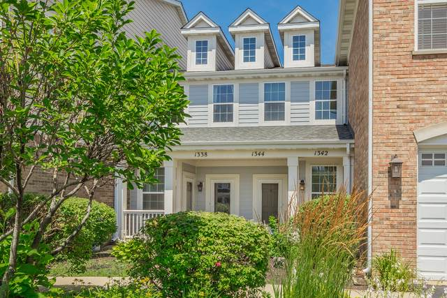 1344 Scarboro Road #705, Schaumburg, IL 60193 (MLS #10457758) :: Ani Real Estate