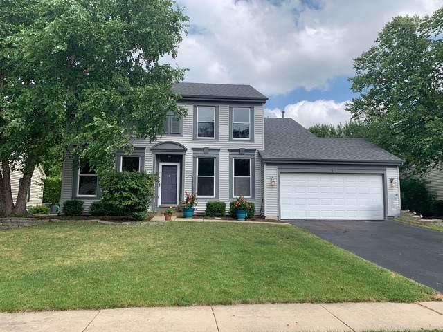 1459 Magnolia Drive, Crystal Lake, IL 60014 (MLS #10457781) :: Ani Real Estate