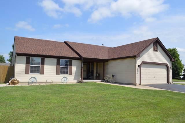 1402 Chestnut Lane, Yorkville, IL 60560 (MLS #10457808) :: Berkshire Hathaway HomeServices Snyder Real Estate