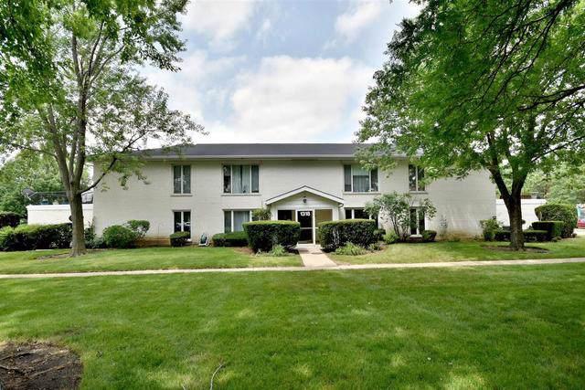 1318 S New Wilke Road 1A, Arlington Heights, IL 60005 (MLS #10457992) :: Helen Oliveri Real Estate