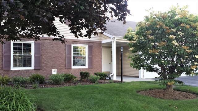 310 Newport Lane C1, Bartlett, IL 60103 (MLS #10458014) :: Touchstone Group