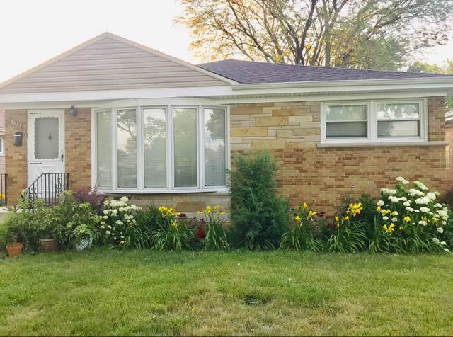 8833 National Avenue, Morton Grove, IL 60053 (MLS #10458099) :: Helen Oliveri Real Estate