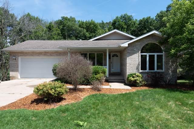 1411 April Lane, Winthrop Harbor, IL 60096 (MLS #10458308) :: Ryan Dallas Real Estate