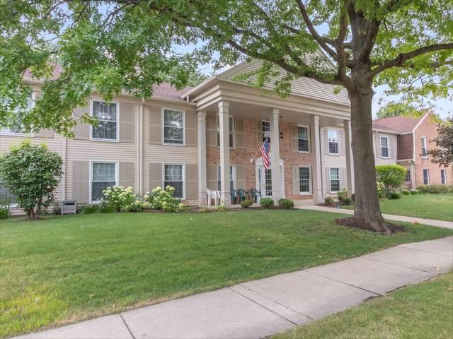 1078 Spring Garden Circle #78, Naperville, IL 60563 (MLS #10458310) :: Ryan Dallas Real Estate