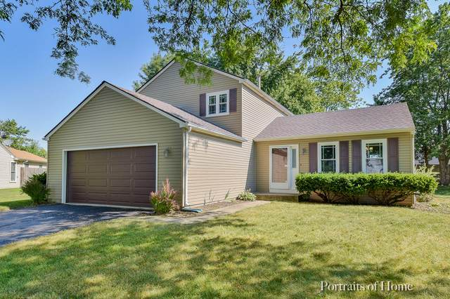 919 Fieldside Lane, Aurora, IL 60504 (MLS #10458339) :: The Spaniak Team