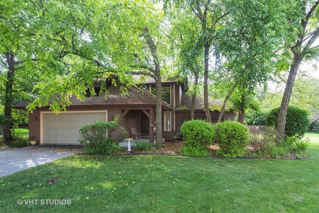 369 Nebraska A Court, Frankfort, IL 60423 (MLS #10458380) :: Property Consultants Realty