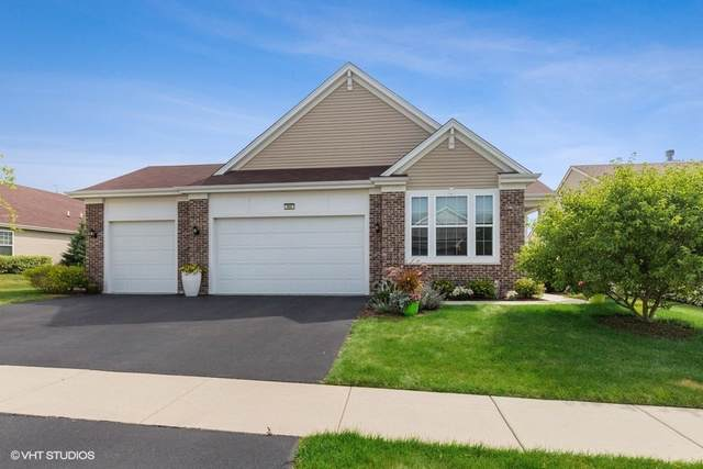 966 Scottsdale Drive, Pingree Grove, IL 60140 (MLS #10458426) :: Century 21 Affiliated