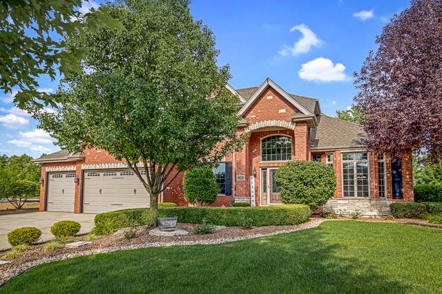 22985 Toscana Drive, Frankfort, IL 60423 (MLS #10458550) :: Property Consultants Realty