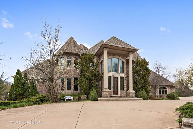 140 Century Oaks Drive, North Barrington, IL 60010 (MLS #10458589) :: Ani Real Estate