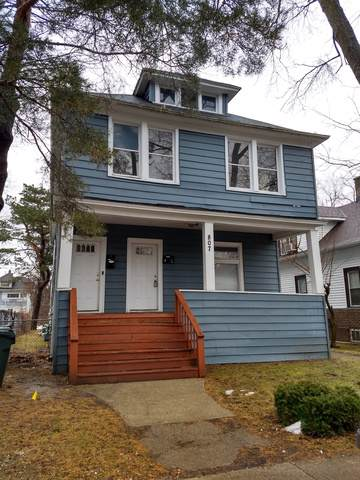 807 S Mcalister Avenue, Waukegan, IL 60085 (MLS #10458646) :: The Dena Furlow Team - Keller Williams Realty