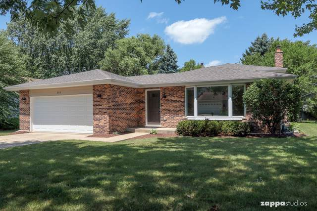 205 Terrance Drive, Naperville, IL 60565 (MLS #10458790) :: Berkshire Hathaway HomeServices Snyder Real Estate