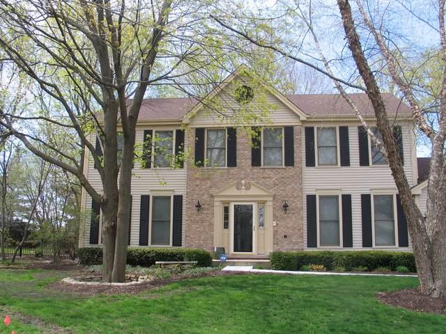 8 Hartford Court, Algonquin, IL 60102 (MLS #10459094) :: Ryan Dallas Real Estate