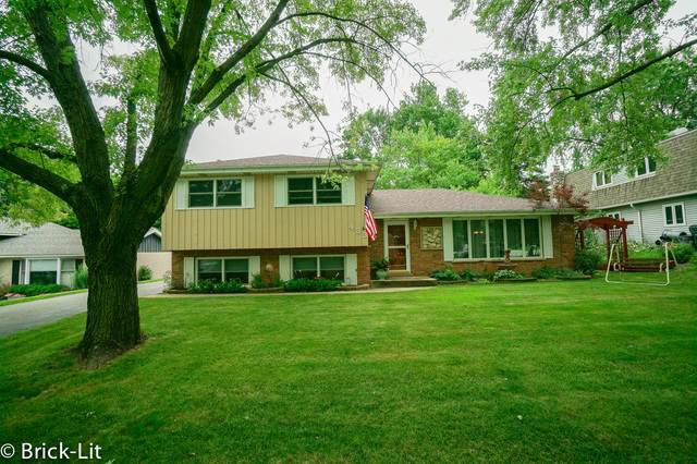 433 Elm Street, Frankfort, IL 60423 (MLS #10459197) :: Property Consultants Realty
