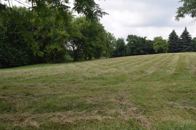 54 Deer Point Drive, Hawthorn Woods, IL 60047 (MLS #10459309) :: The Dena Furlow Team - Keller Williams Realty