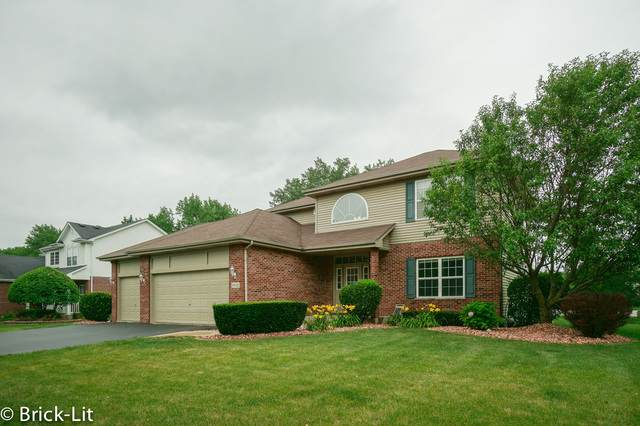 19938 Lakeview Way, Mokena, IL 60448 (MLS #10459345) :: Property Consultants Realty