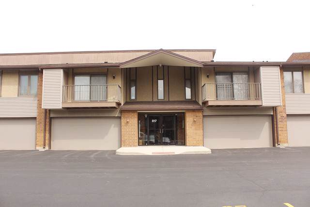 817 Oakton Street #102, Elk Grove Village, IL 60007 (MLS #10459383) :: Property Consultants Realty