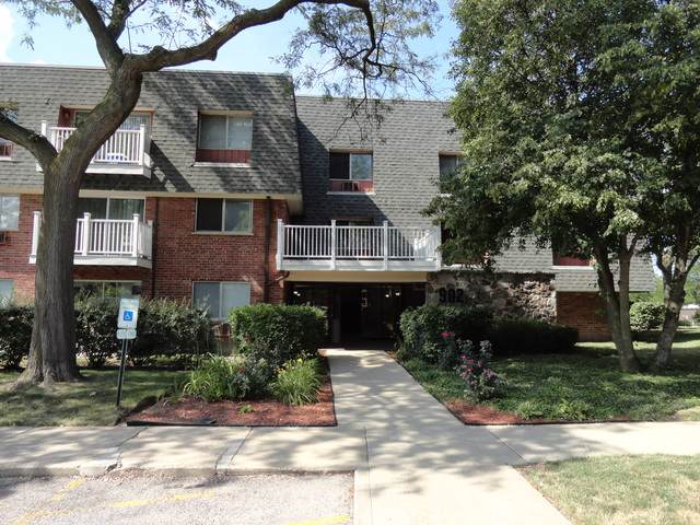 902 Ridge Square #311, Elk Grove Village, IL 60007 (MLS #10459409) :: Property Consultants Realty