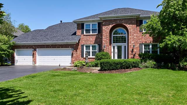 546 Arbor Lane, Oswego, IL 60543 (MLS #10459854) :: The Dena Furlow Team - Keller Williams Realty