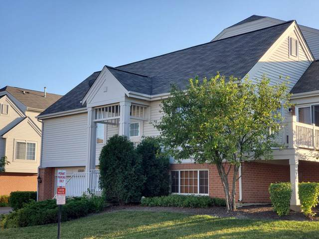 10228 A S Camden Lane S A, Bridgeview, IL 60455 (MLS #10460373) :: Property Consultants Realty