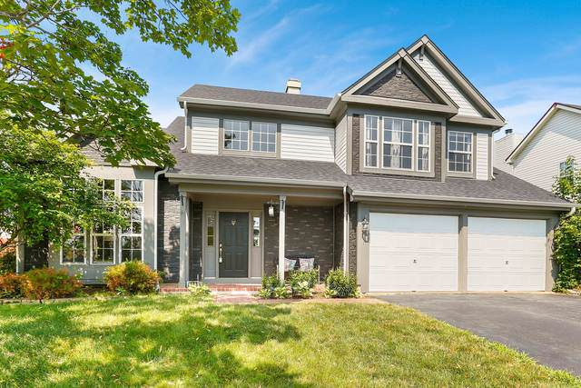 251 Superior Circle, Bartlett, IL 60103 (MLS #10460782) :: The Wexler Group at Keller Williams Preferred Realty