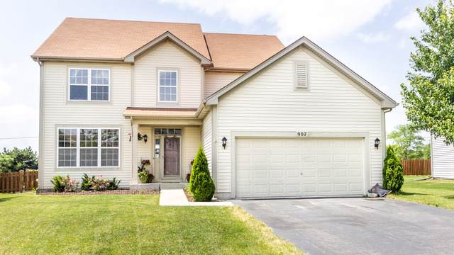 907 Plaintain Drive, Joliet, IL 60431 (MLS #10460830) :: Property Consultants Realty