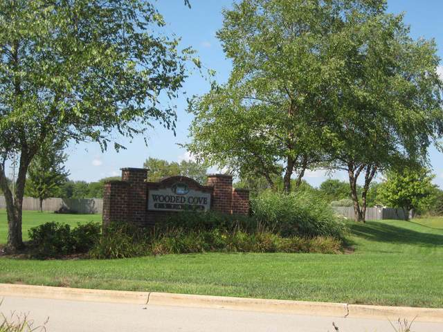 21253 S Wooded Cove Drive, Elwood, IL 60421 (MLS #10460943) :: Angela Walker Homes Real Estate Group