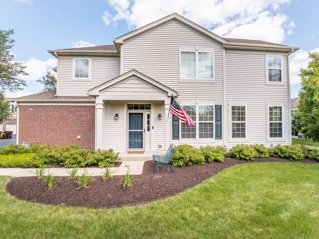 9991 Cummings Street, Huntley, IL 60142 (MLS #10461131) :: The Dena Furlow Team - Keller Williams Realty