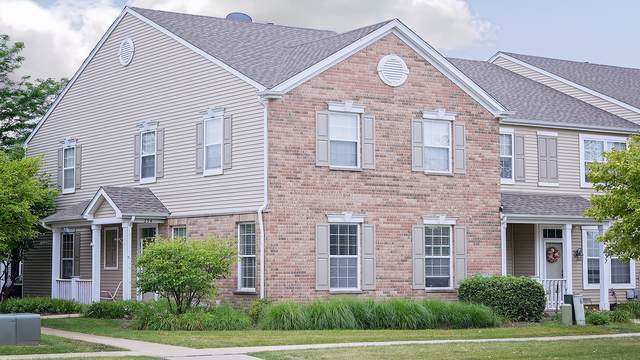 234 Springbrook Trail S, Oswego, IL 60543 (MLS #10461154) :: Property Consultants Realty