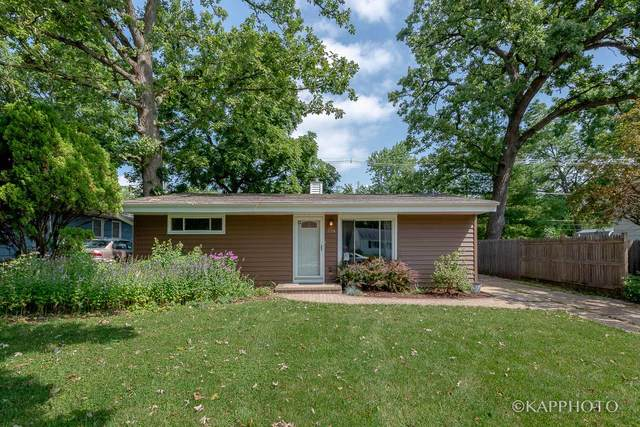 338 N Lakeshore Drive, Mundelein, IL 60060 (MLS #10461158) :: Ryan Dallas Real Estate