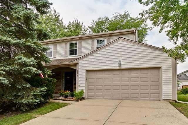 991 Knollwood Drive, Buffalo Grove, IL 60089 (MLS #10461202) :: The Dena Furlow Team - Keller Williams Realty