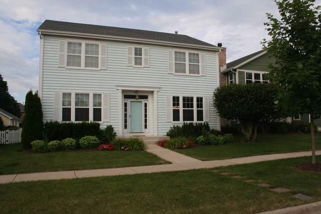 284 Lasalle Street, Vernon Hills, IL 60061 (MLS #10461218) :: The Dena Furlow Team - Keller Williams Realty