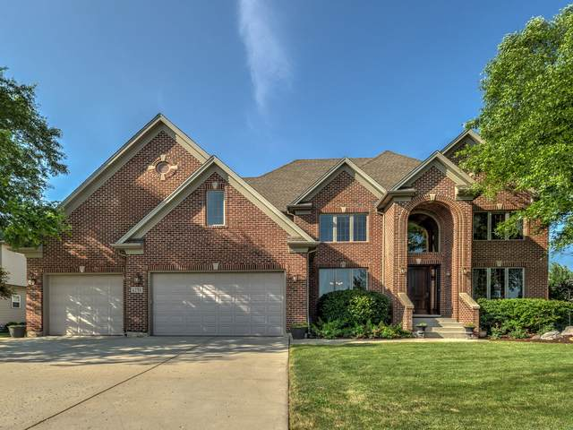1251 Clearwater Drive, Yorkville, IL 60560 (MLS #10461319) :: Property Consultants Realty