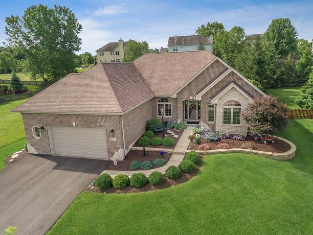 222 Windham Circle, Yorkville, IL 60560 (MLS #10461465) :: Baz Realty Network | Keller Williams Elite