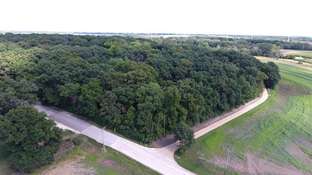 Lot 2 Finley Road, Sugar Grove, IL 60554 (MLS #10462599) :: Angela Walker Homes Real Estate Group