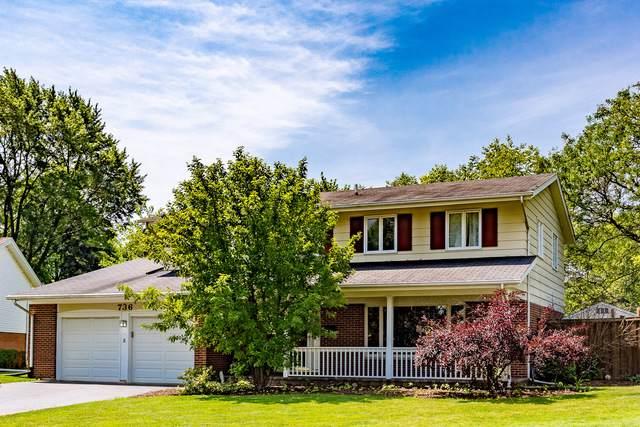 736 Milbeck Court, Elk Grove Village, IL 60007 (MLS #10463646) :: Baz Realty Network | Keller Williams Elite
