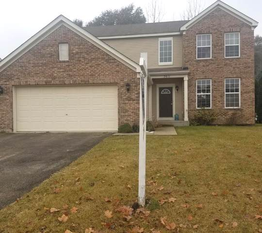 3611 Timberlake Drive, Joliet, IL 60435 (MLS #10464279) :: Property Consultants Realty