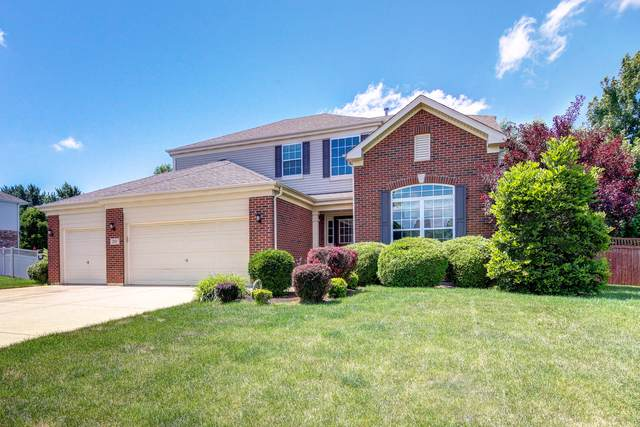 217 Tonell Avenue, New Lenox, IL 60451 (MLS #10465056) :: Berkshire Hathaway HomeServices Snyder Real Estate