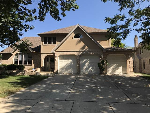 357 Donna Lane, Bloomingdale, IL 60108 (MLS #10465713) :: Ani Real Estate