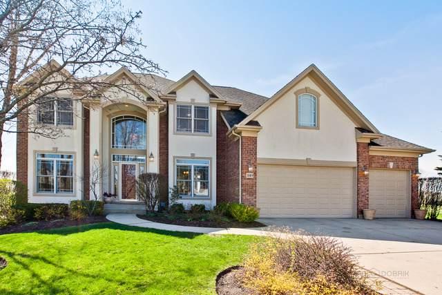 381 Torrey Pines Way, Vernon Hills, IL 60061 (MLS #10466946) :: Angela Walker Homes Real Estate Group