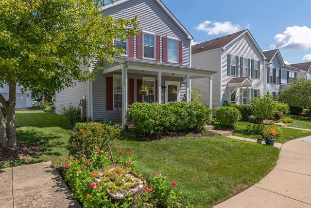 239 W Washington Street, Oswego, IL 60543 (MLS #10467010) :: Helen Oliveri Real Estate