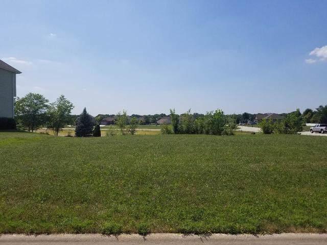 20930 Lakewoods Lane, Shorewood, IL 60404 (MLS #10467519) :: Janet Jurich
