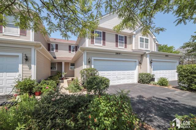 2805 Cattail Court C, Wauconda, IL 60084 (MLS #10467762) :: Angela Walker Homes Real Estate Group