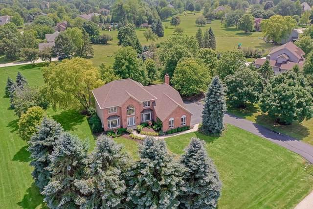 8N003 Northern Dancer Lane, St. Charles, IL 60175 (MLS #10467935) :: Berkshire Hathaway HomeServices Snyder Real Estate